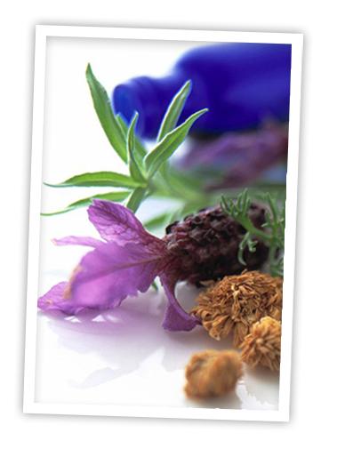 Welkom bij Innergy homeopathie